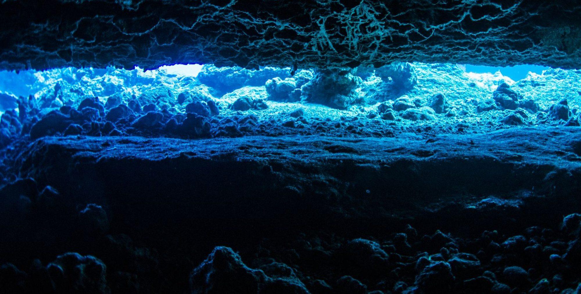 沖縄ダイビング総合情報サイト