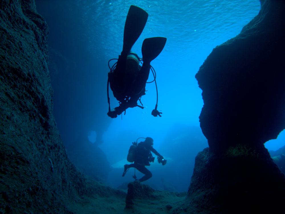 沖縄ダイビング情報